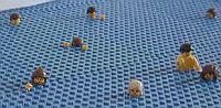 Lego_flood