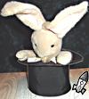 Rabbit_web